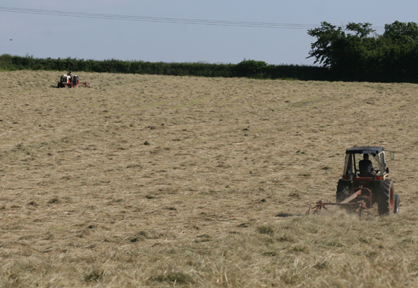 Farmers are busy availing of the best summer in Ireland in many years..